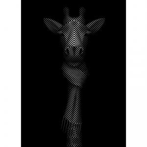 Giraffe in Scarf-Tim Christie