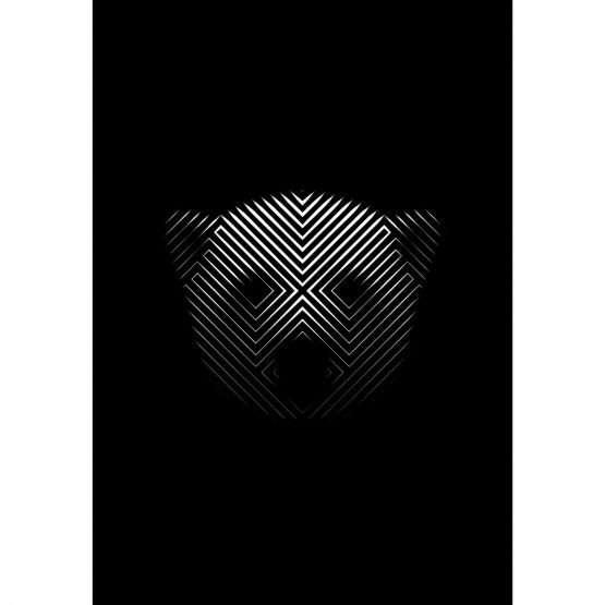 Micucci Interiors - Tim Christie – Polar Bear