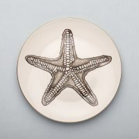 Starfish Dinner Plate-Micuit Collection