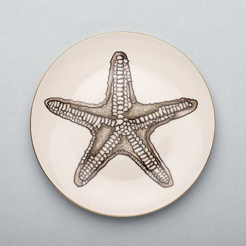 Micucci Interiors - MICUIT – STARFISH DINNER PLATE