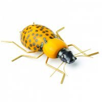 Beetle-Ceramic-Beetle ceramic decorative style