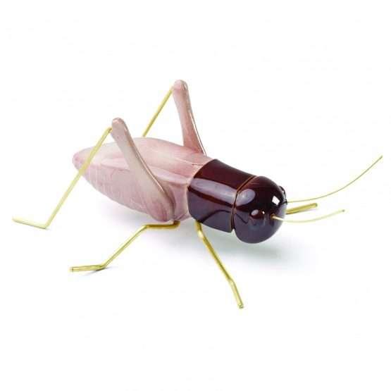 Cricket-Ceramic