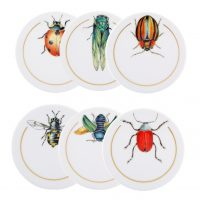 Insects Sets Of 6 Coasters