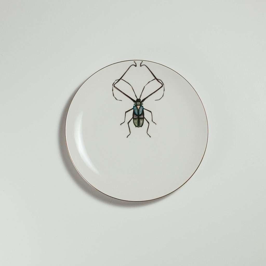 Harlequin beetle dessert plate