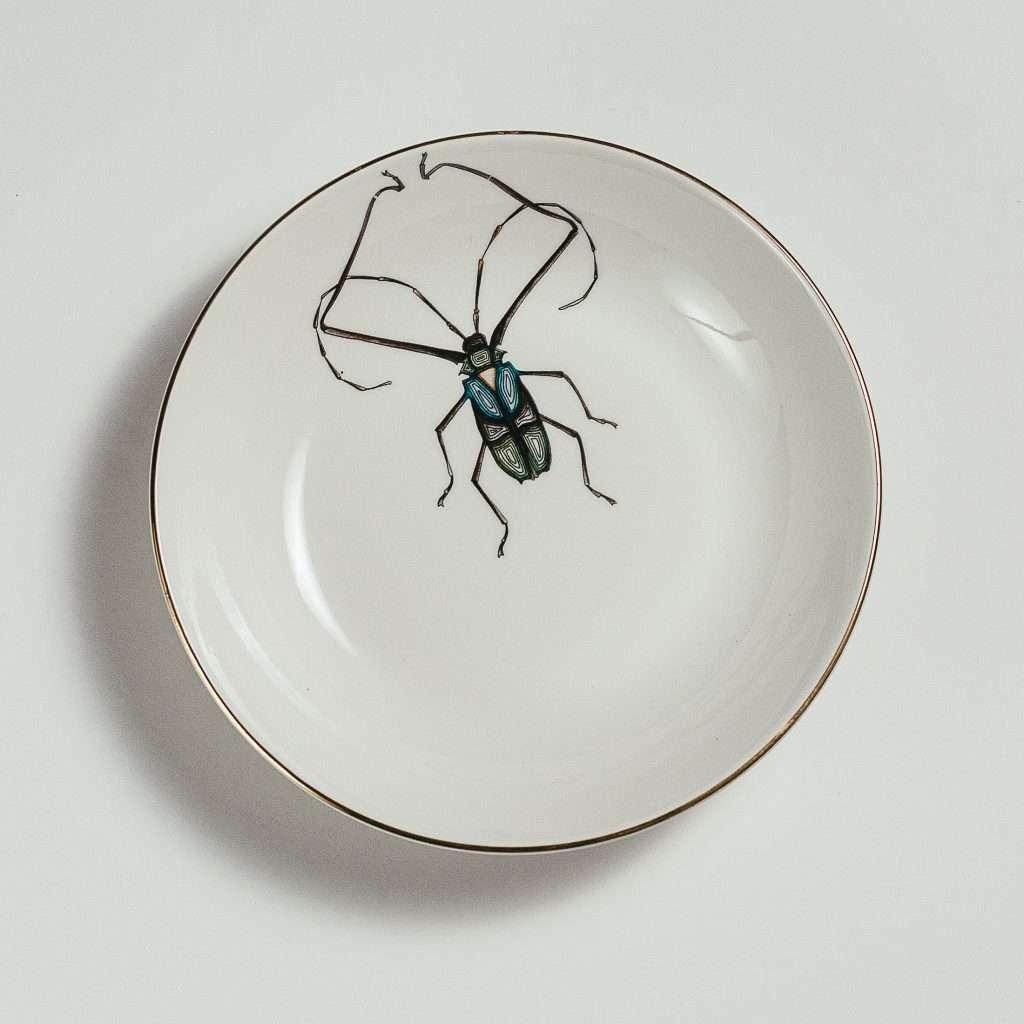 Harlequin beetle soup plate